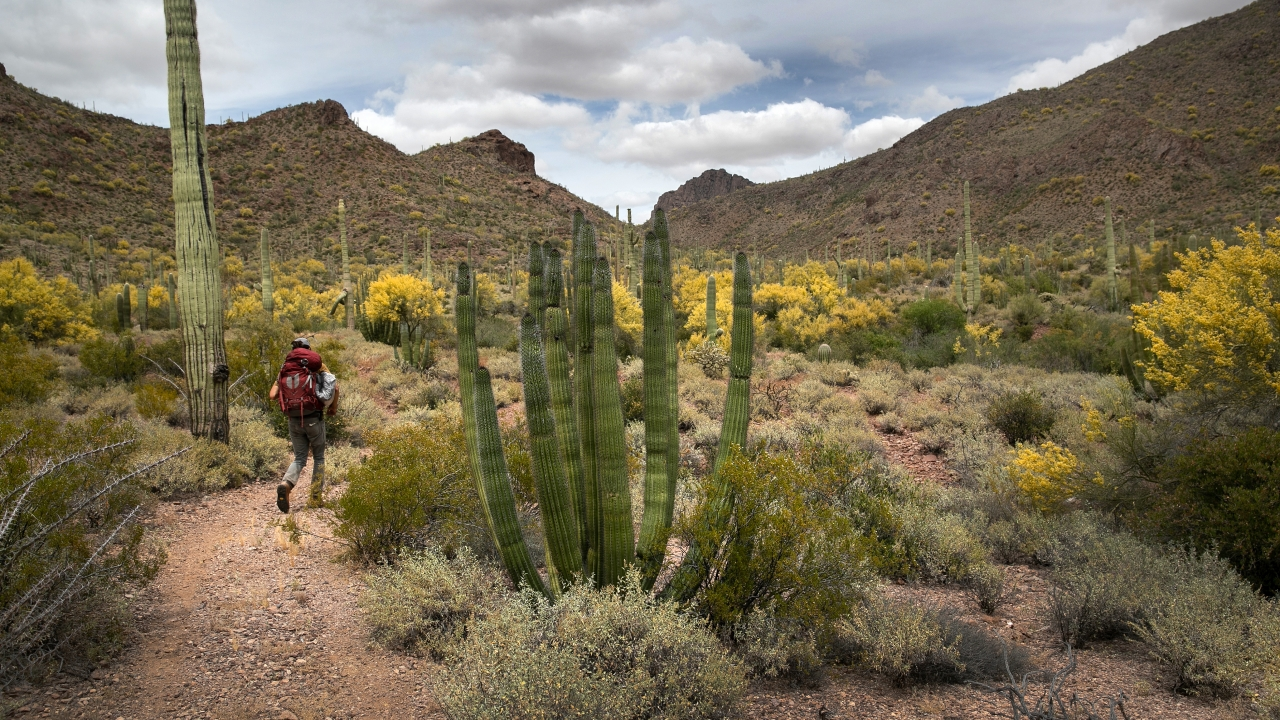 Report: Border Barrier Could Damage Archaeological Sites In Arizona