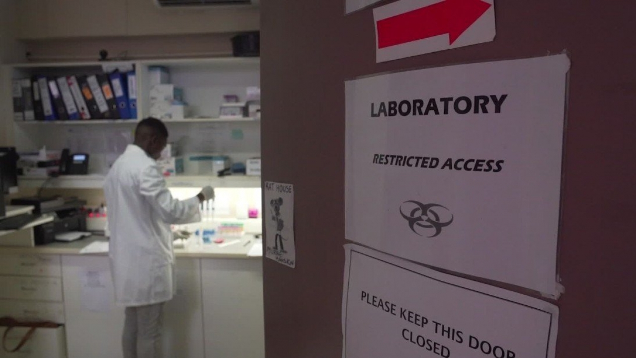 Pharmacist in a lab