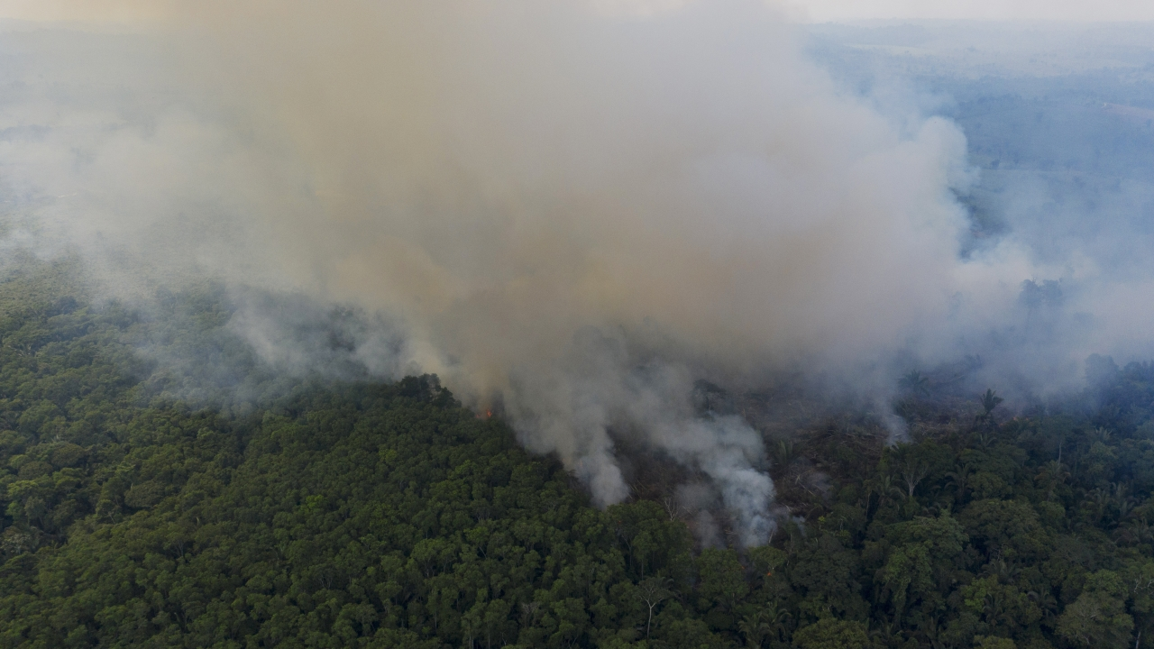 Smoke rises from a fire in the Amazon rainforest.