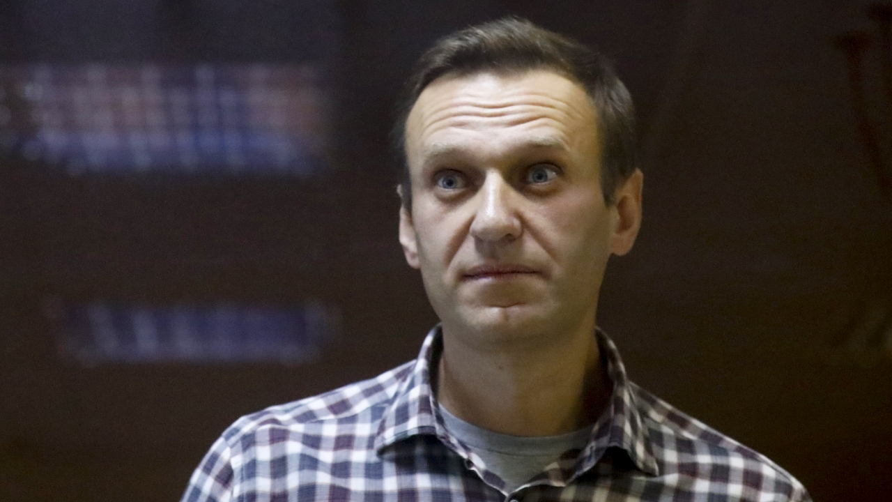 Russian opposition leader Alexei Navalny stands in a cage in the Babuskinsky District Court