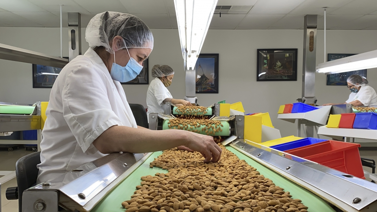 Employees inspect almonds in the processing facility at Steward & Jasper Orchards in Newman, Calif.